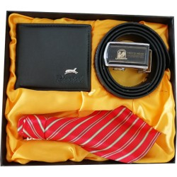 Elegant Gift Set With Tie, Belt & Wallet, Gift Idea